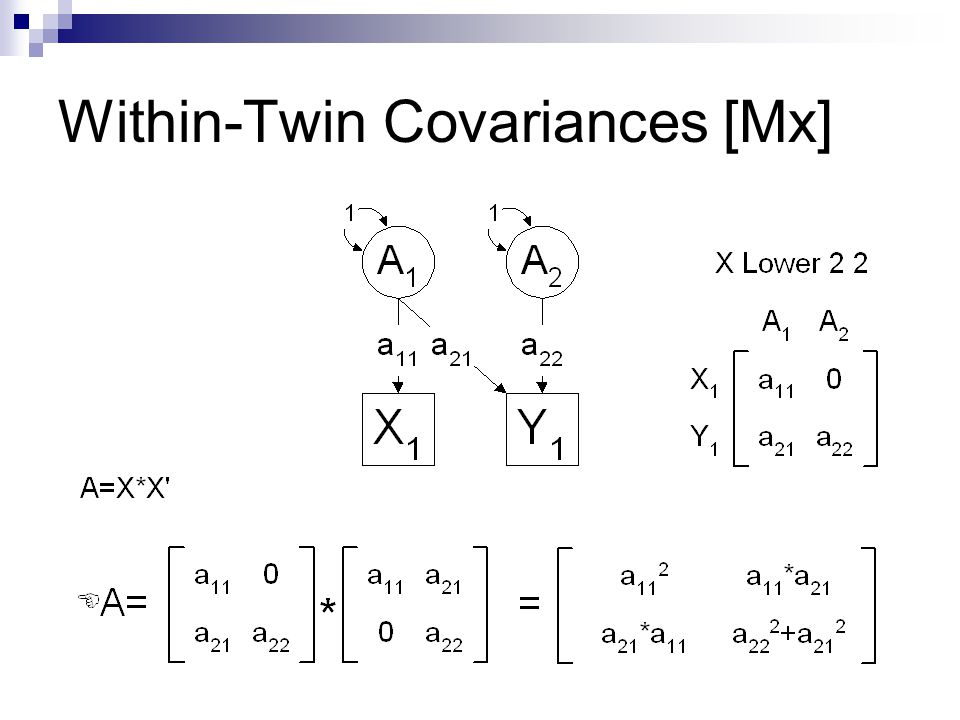 Within-Twin Covariances [Mx]